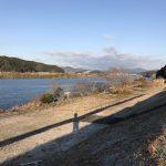 四万十川の青のり原藻の採取状況
